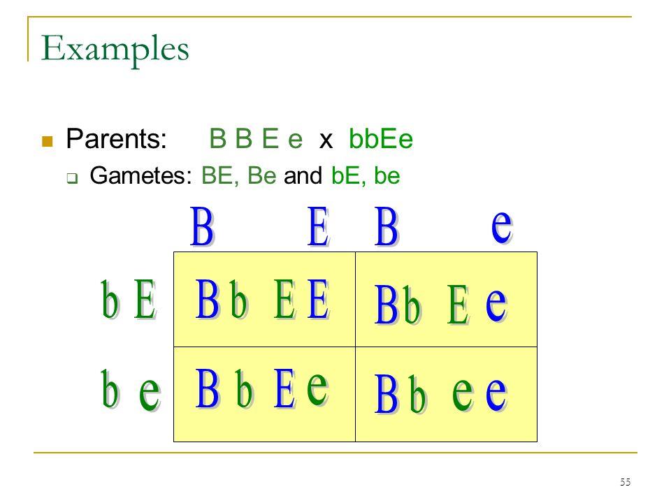 Examples B E B e b E B b E E B b E e b B b E e B b e e e