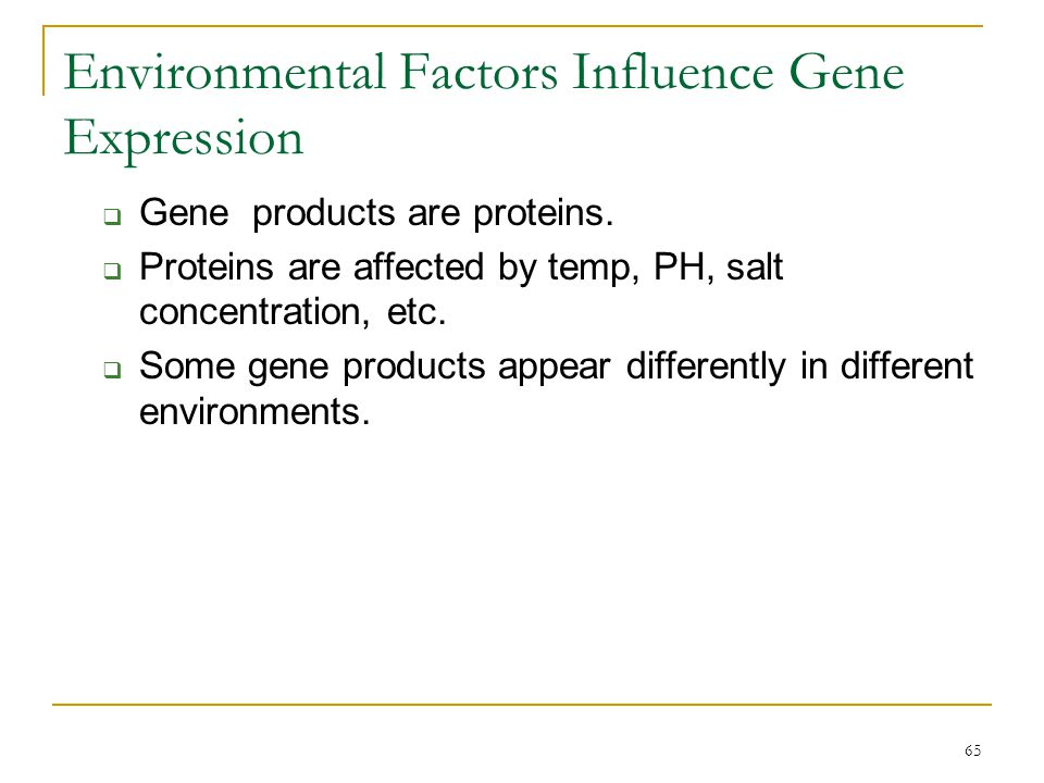 Environmental Factors Influence Gene Expression