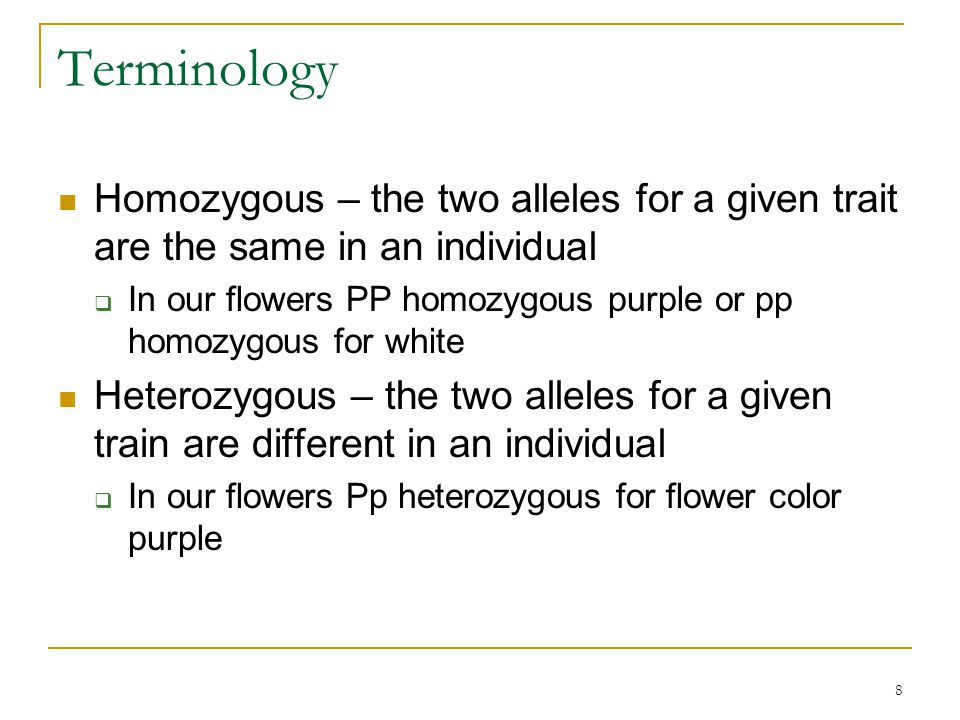 Terminology Homozygous – the two alleles for a given trait are the same in an individual.