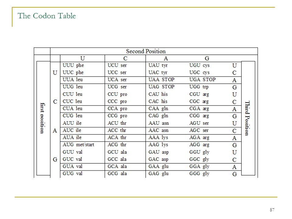 The Codon Table
