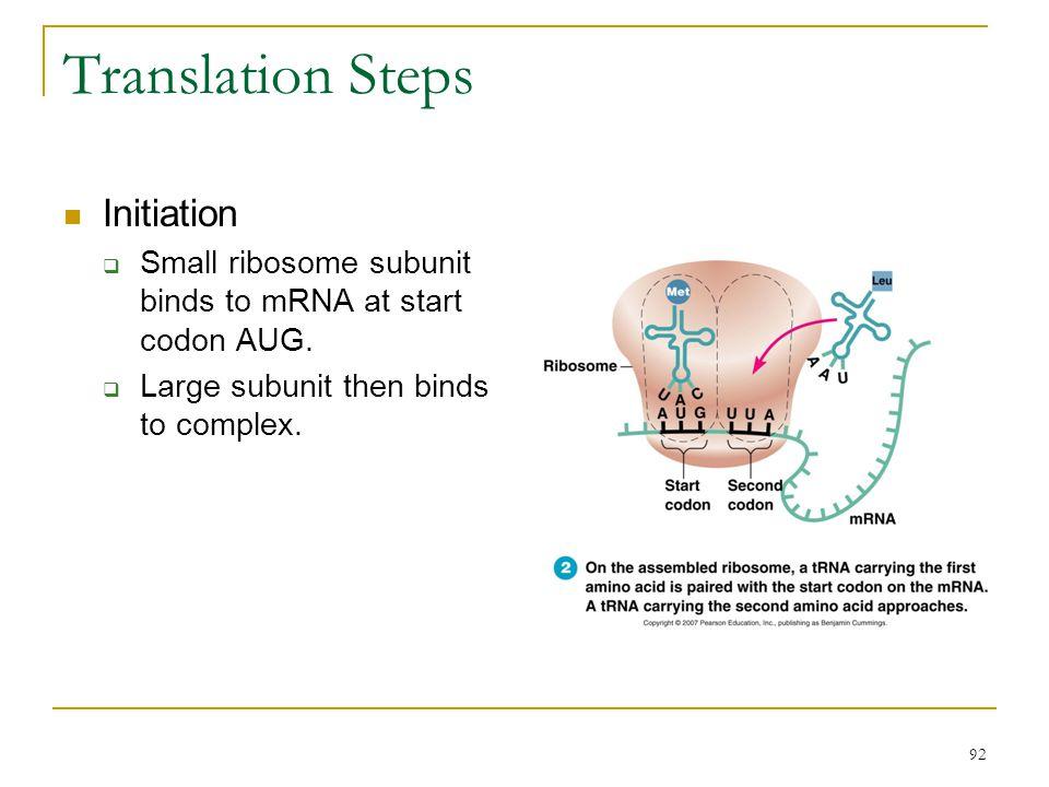 Translation Steps Initiation