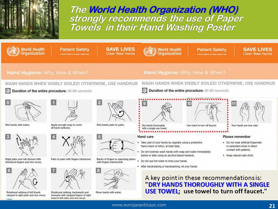 The World Health Organization (WHO)