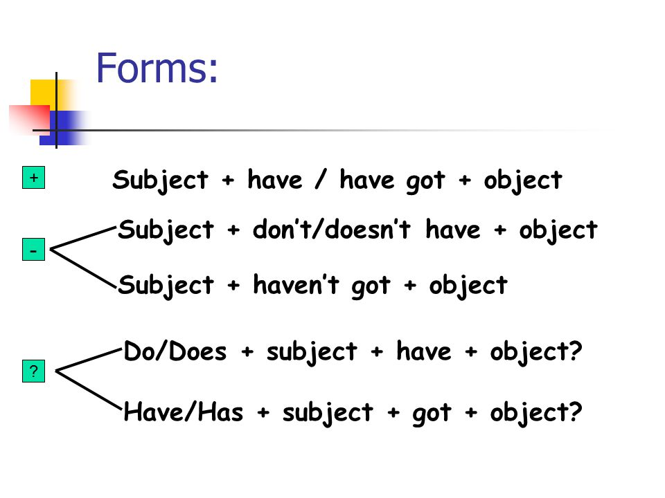 Forms: Subject + have / have got + object