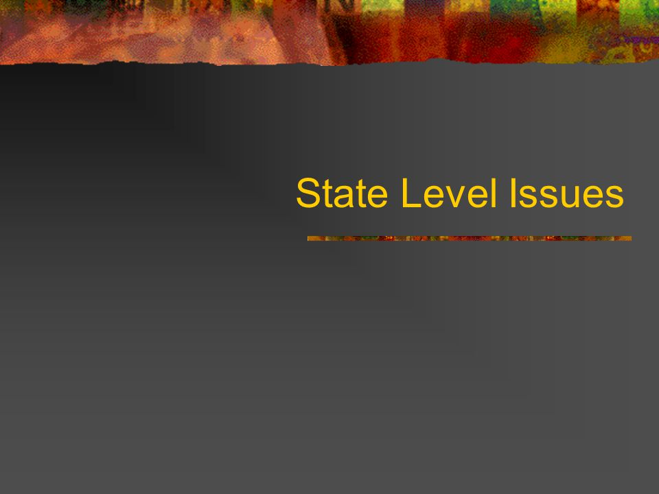 State Level Issues