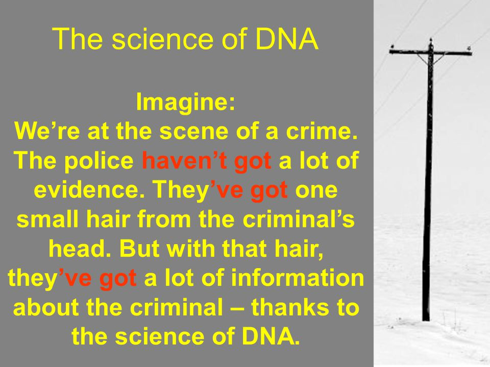 The science of DNA Imagine: