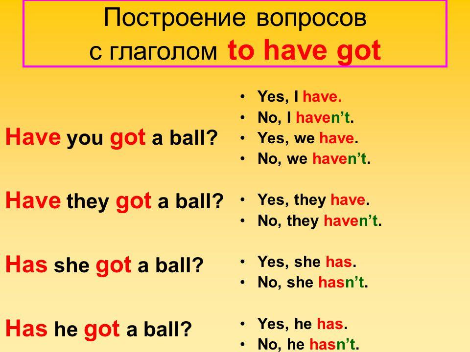 Построение вопросов с глаголом to have got