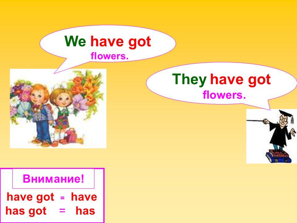 We have got They have got Внимание! have got = have has got = has