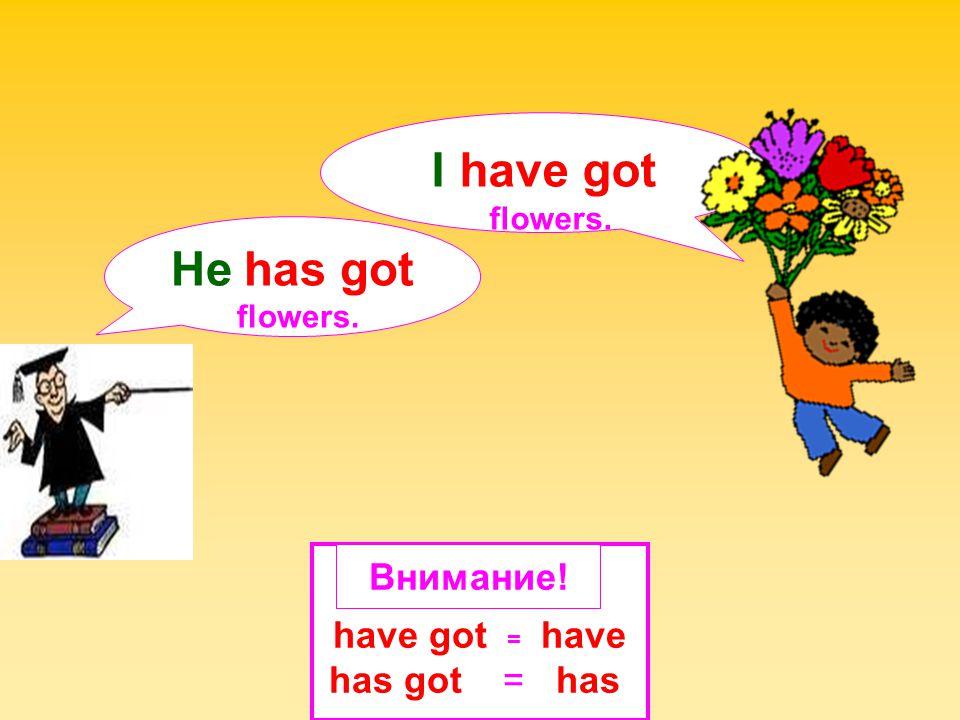I have got He has got Внимание! have got = have has got = has flowers.