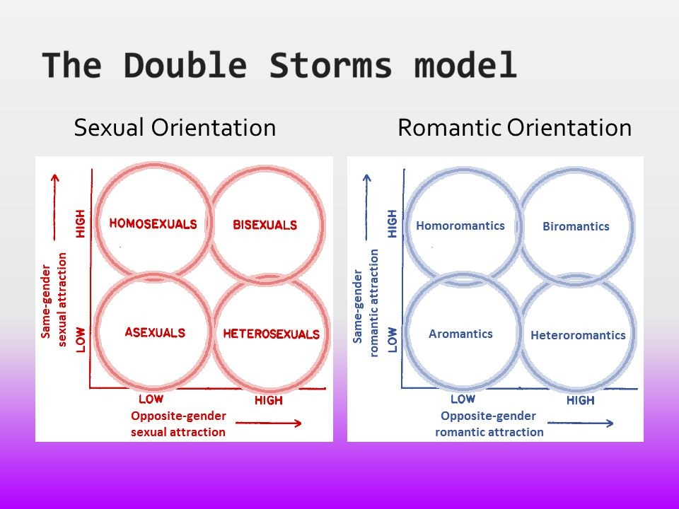 The Double Storms model