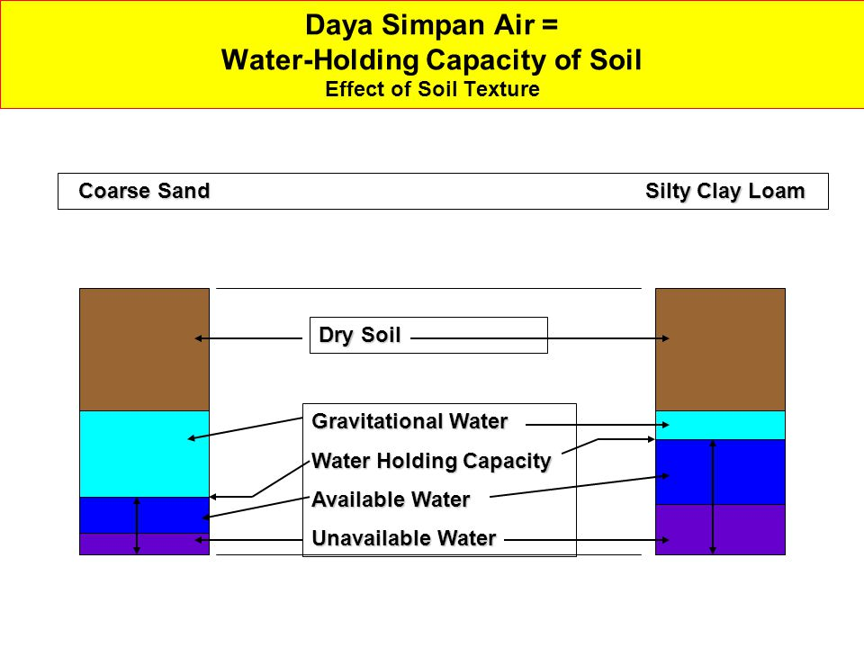 Daya Simpan Air = Water-Holding Capacity of Soil Effect of Soil Texture