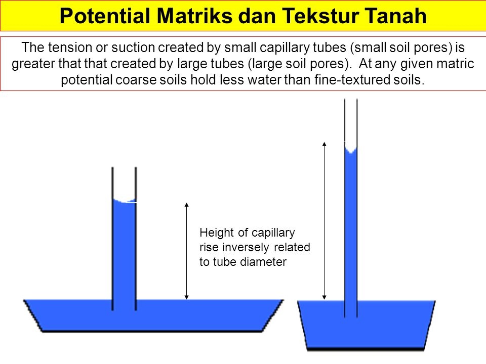 Potential Matriks dan Tekstur Tanah