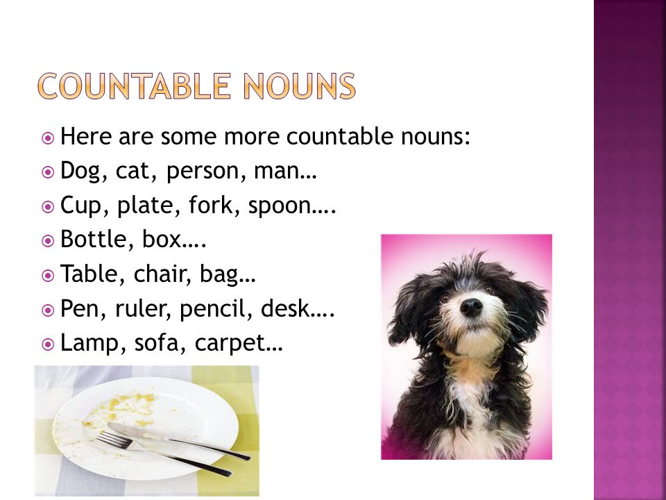Countable nouns Here are some more countable nouns: