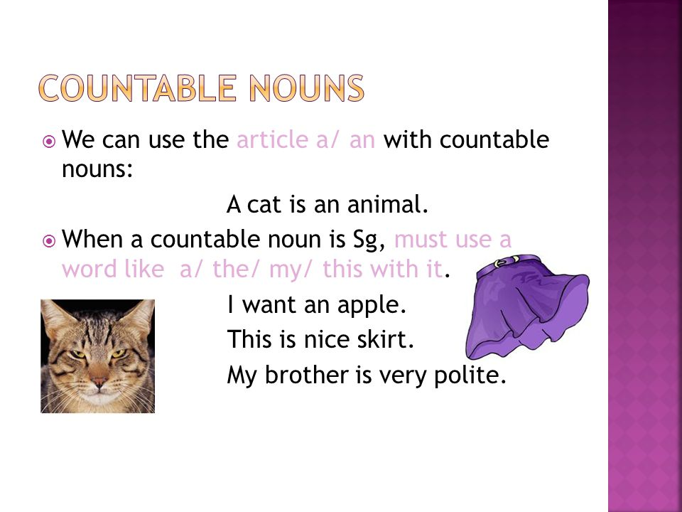 Countable nouns We can use the article a/ an with countable nouns: