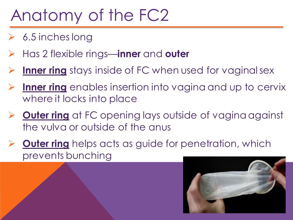 Anatomy of the FC2 6.5 inches long