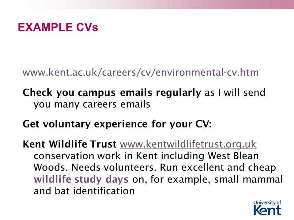 EXAMPLE CVs