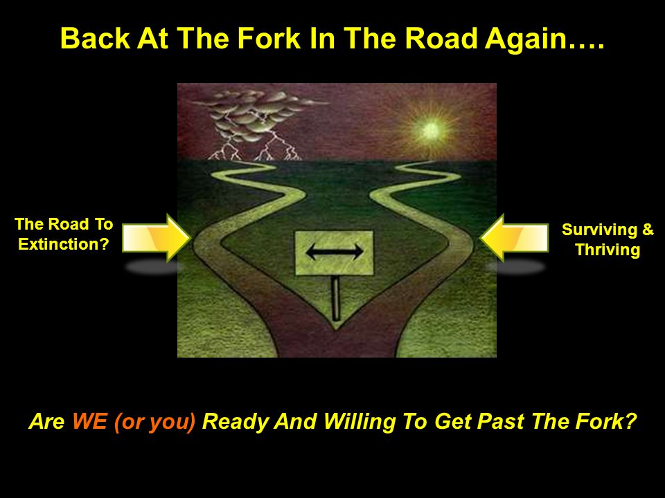 Back At The Fork In The Road Again….