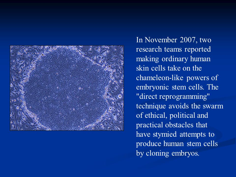 In November 2007, two research teams reported making ordinary human skin cells take on the chameleon-like powers of embryonic stem cells.