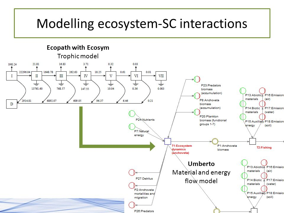 Modelling ecosystem-SC interactions