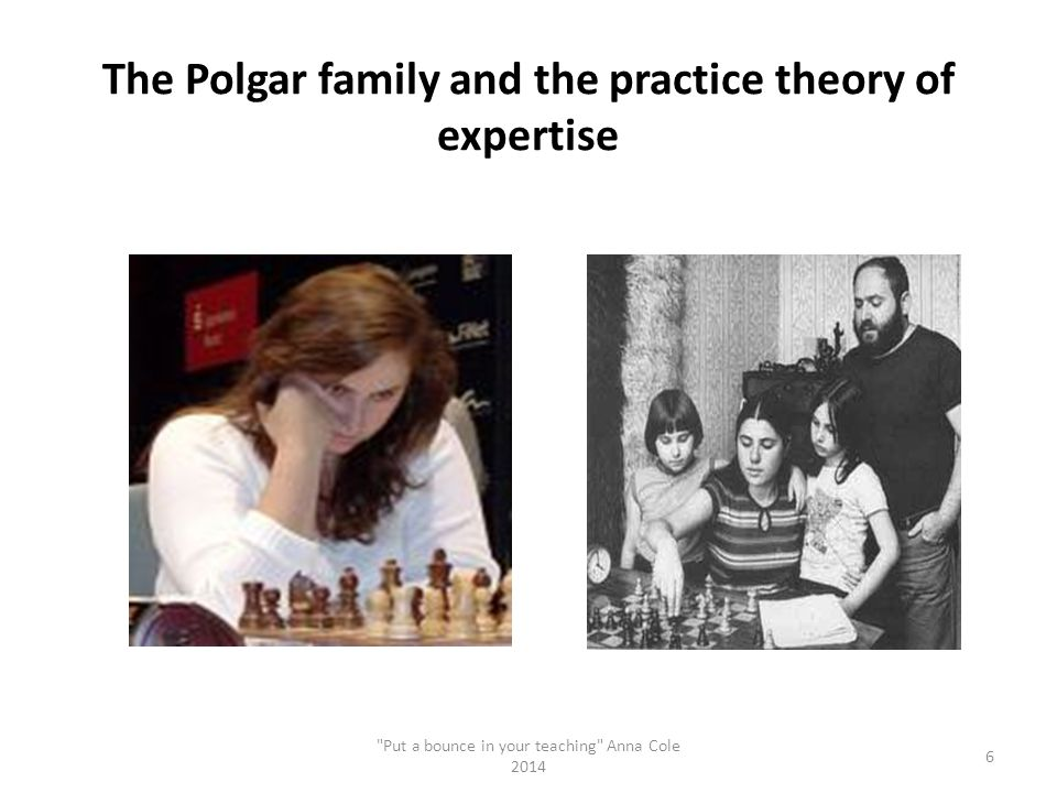 The Polgar family and the practice theory of expertise
