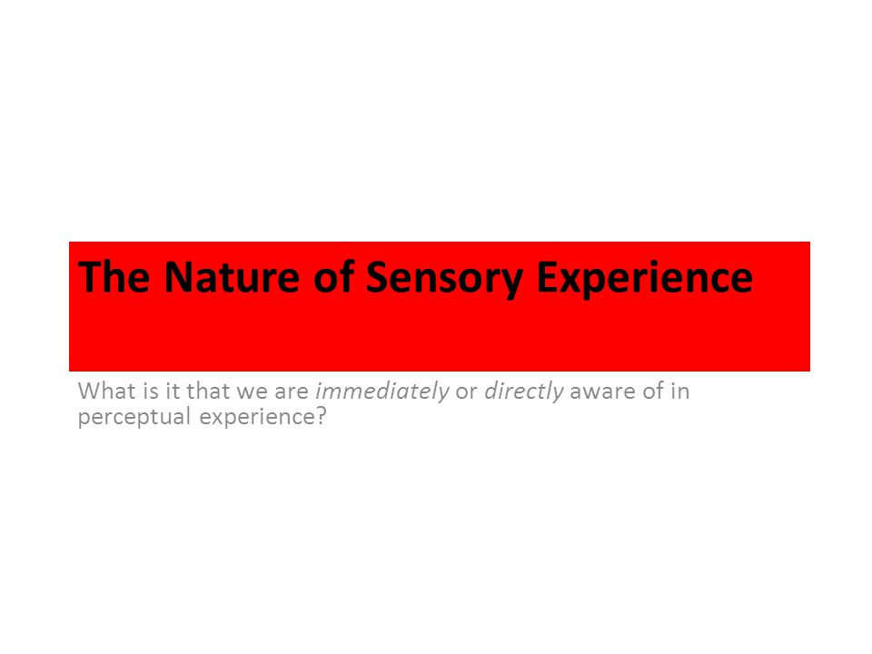 The Nature of Sensory Experience