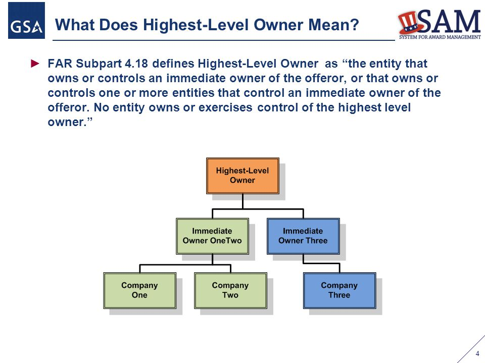 What Does Highest-Level Owner Mean
