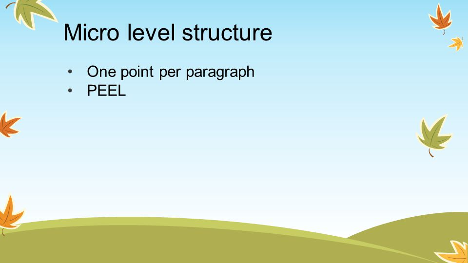Micro level structure One point per paragraph PEEL