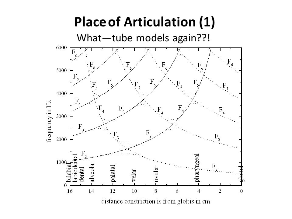 Place of Articulation (1)