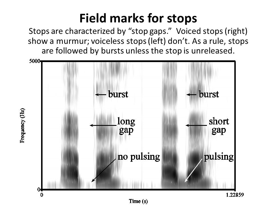 Field marks for stops