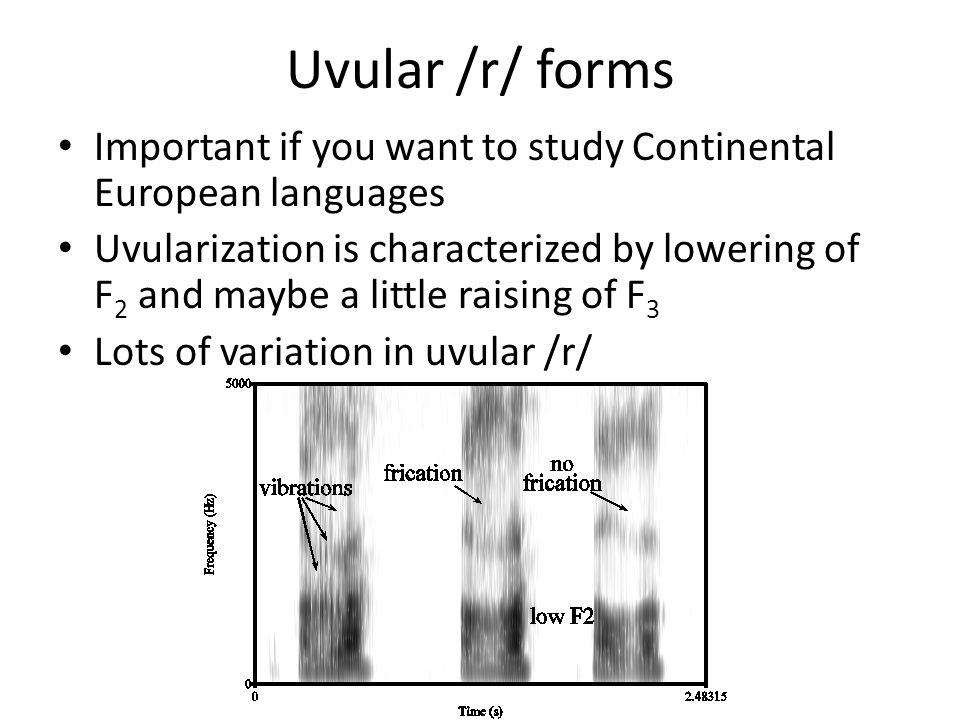 Uvular /r/ forms Important if you want to study Continental European languages.