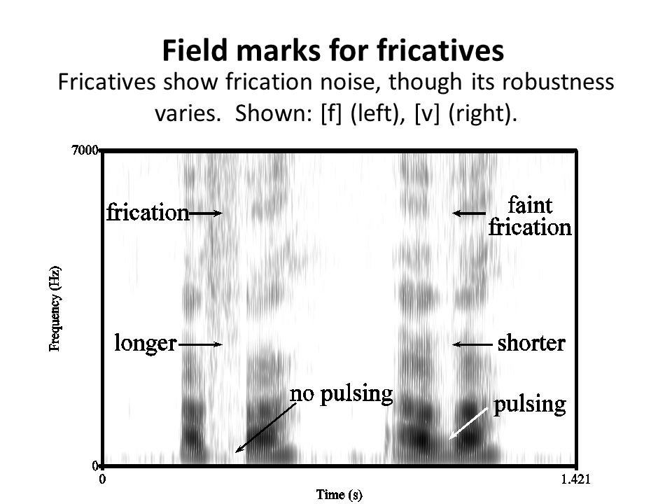 Field marks for fricatives
