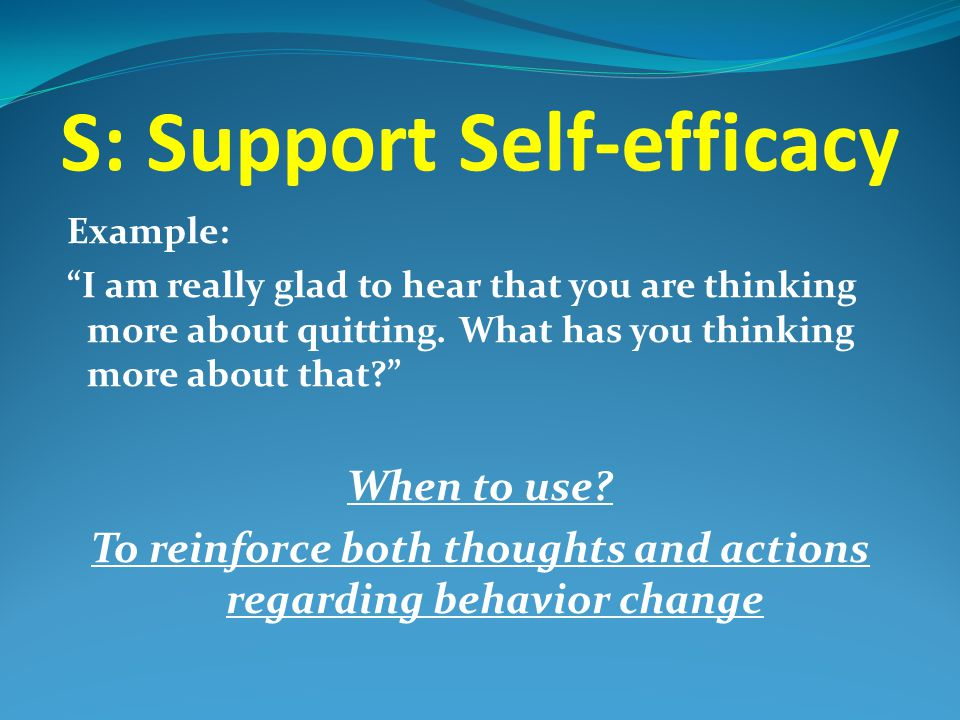 S: Support Self-efficacy