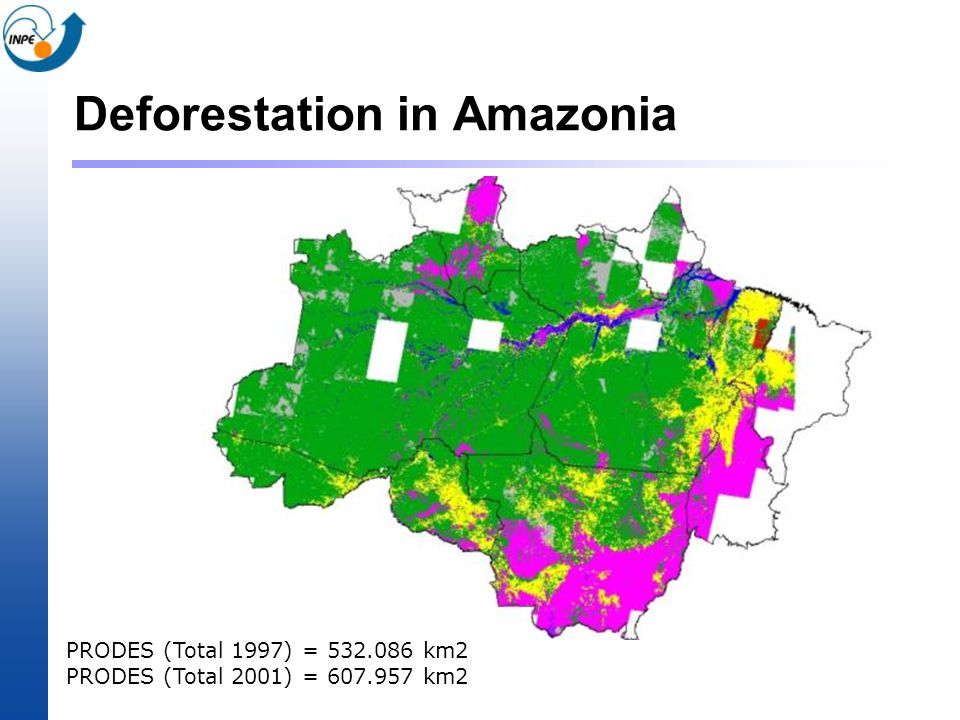 Deforestation in Amazonia