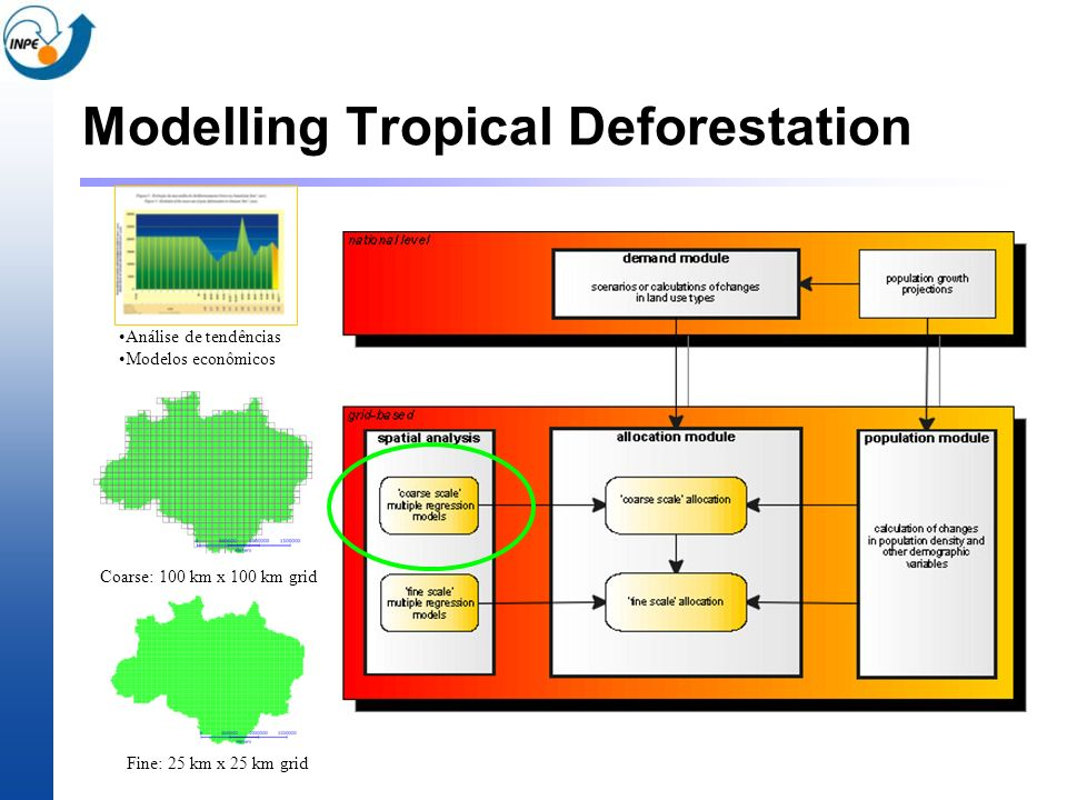 Modelling Tropical Deforestation