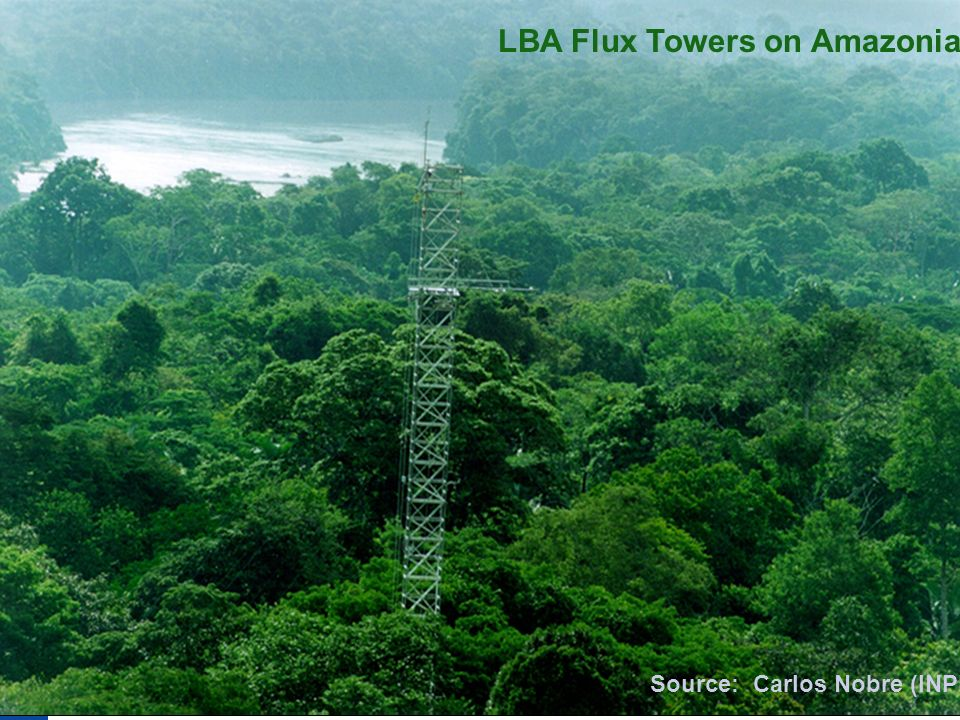 LBA Flux Towers on Amazonia