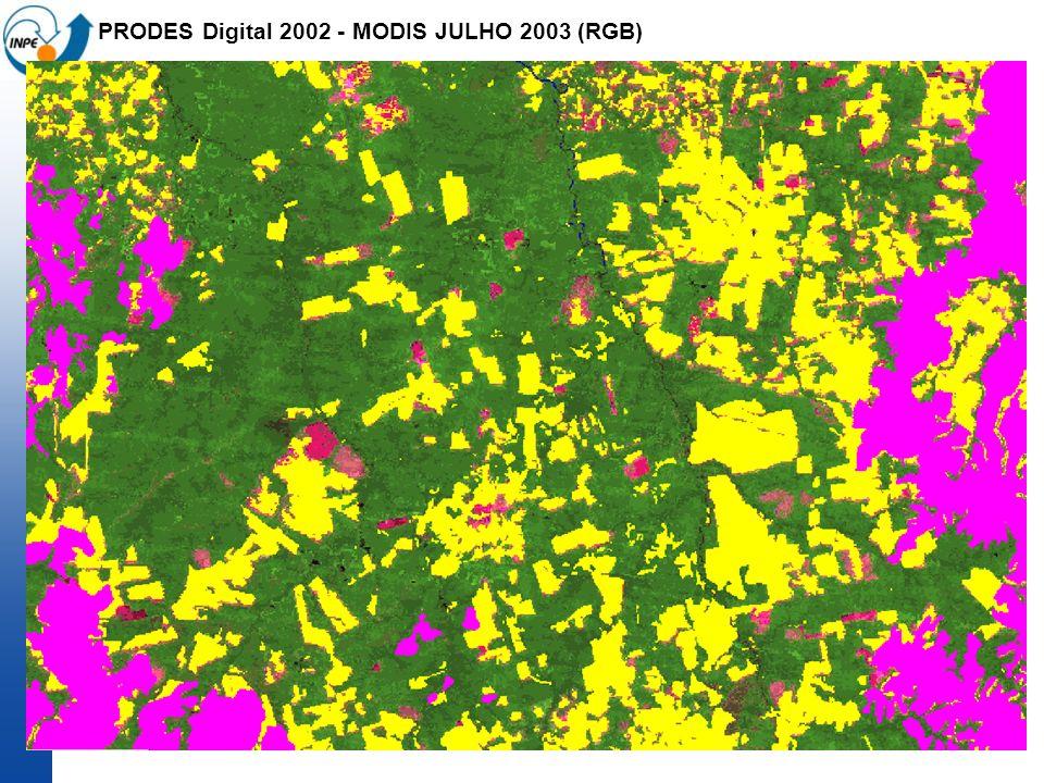 PRODES Digital 2002 - MODIS JULHO 2003 (RGB)