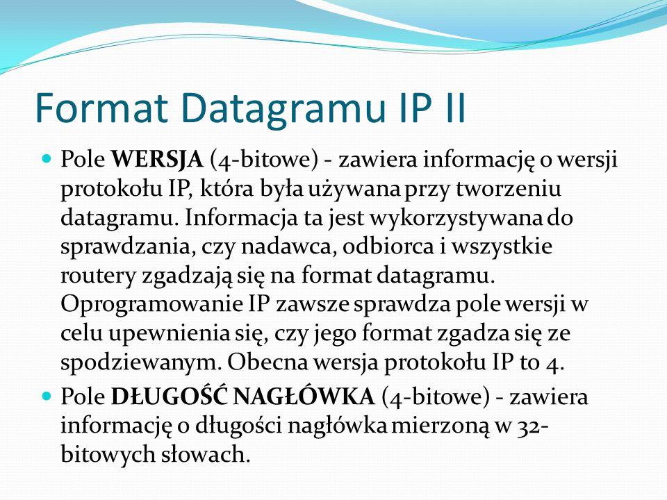 Format Datagramu IP II