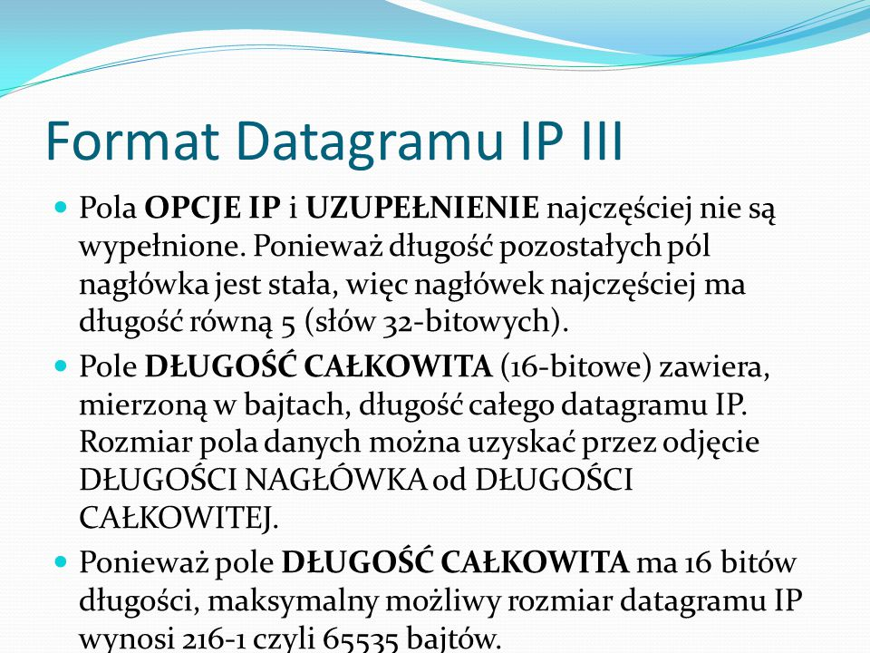 Format Datagramu IP III