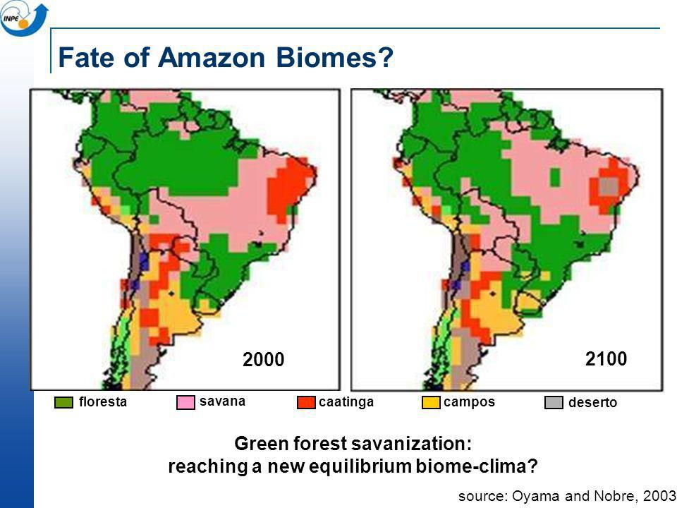 Green forest savanization: reaching a new equilibrium biome-clima