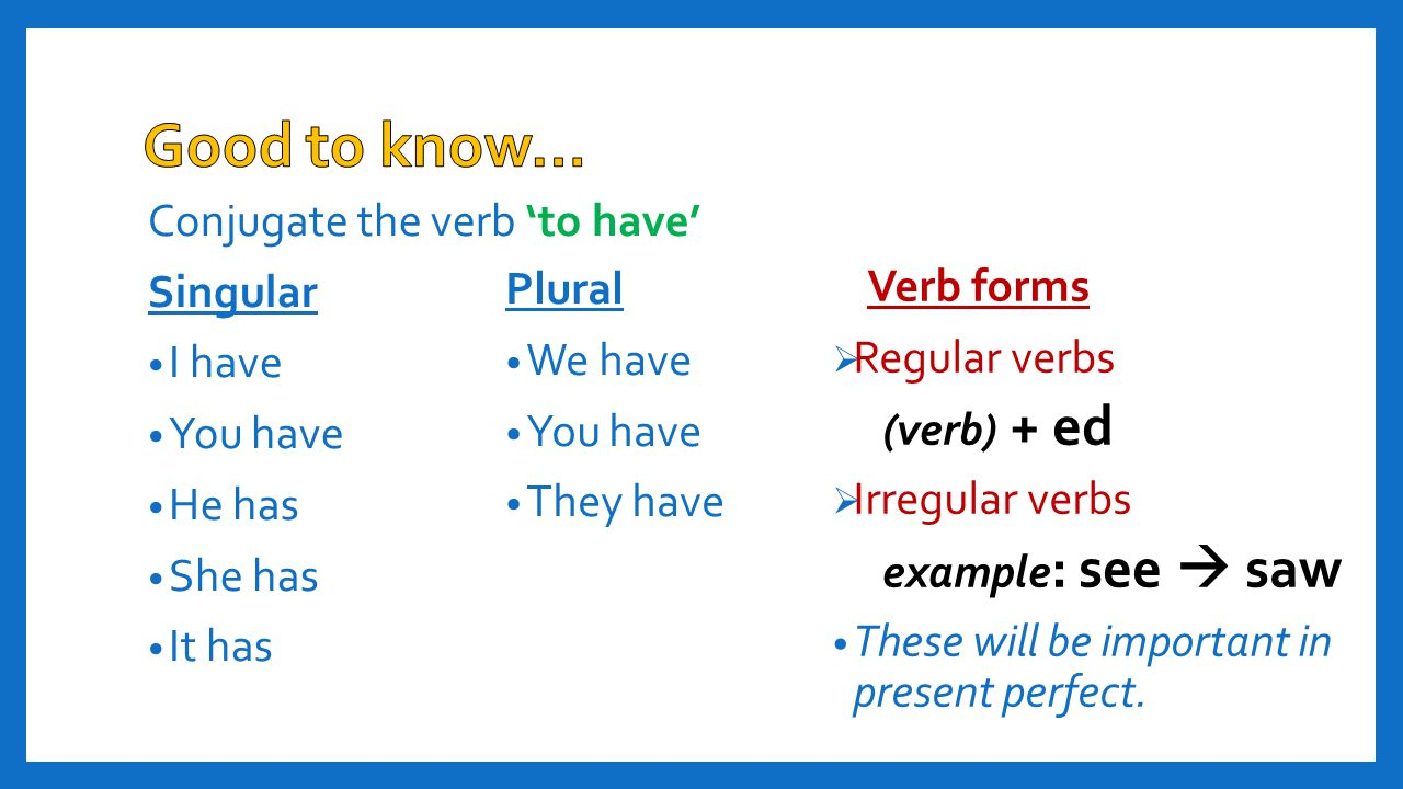 Good to know… Conjugate the verb 'to have' Singular Plural Verb forms