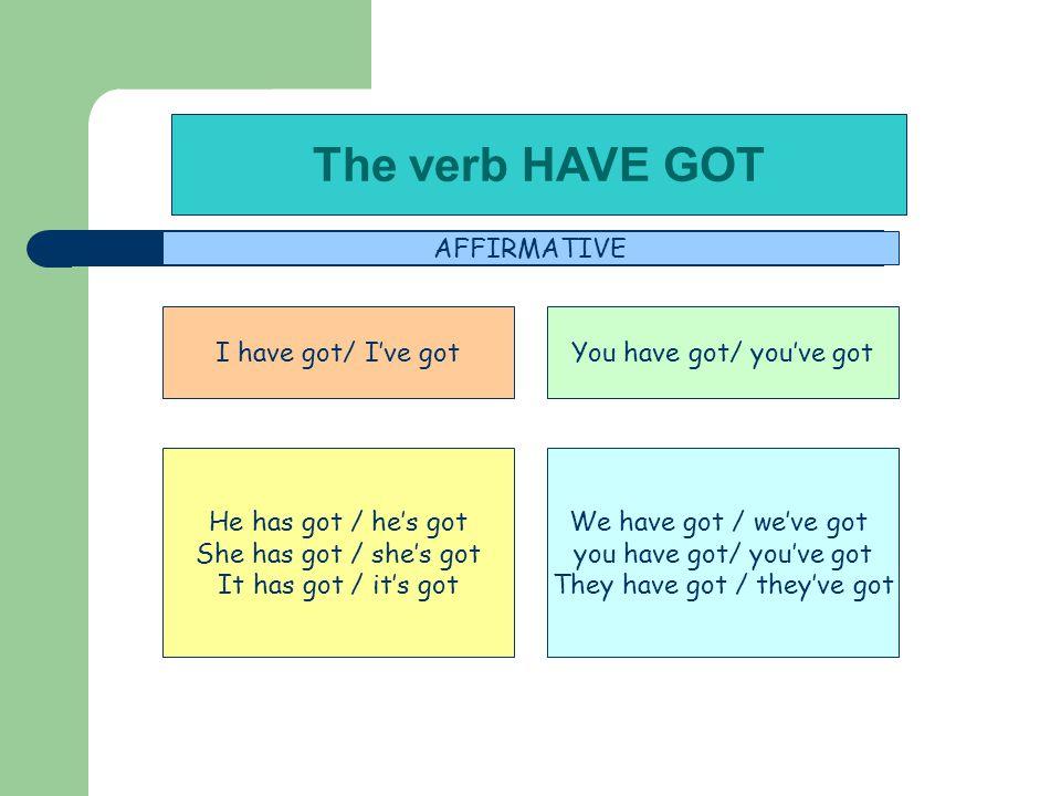 The verb HAVE GOT AFFIRMATIVE I have got/ I've got