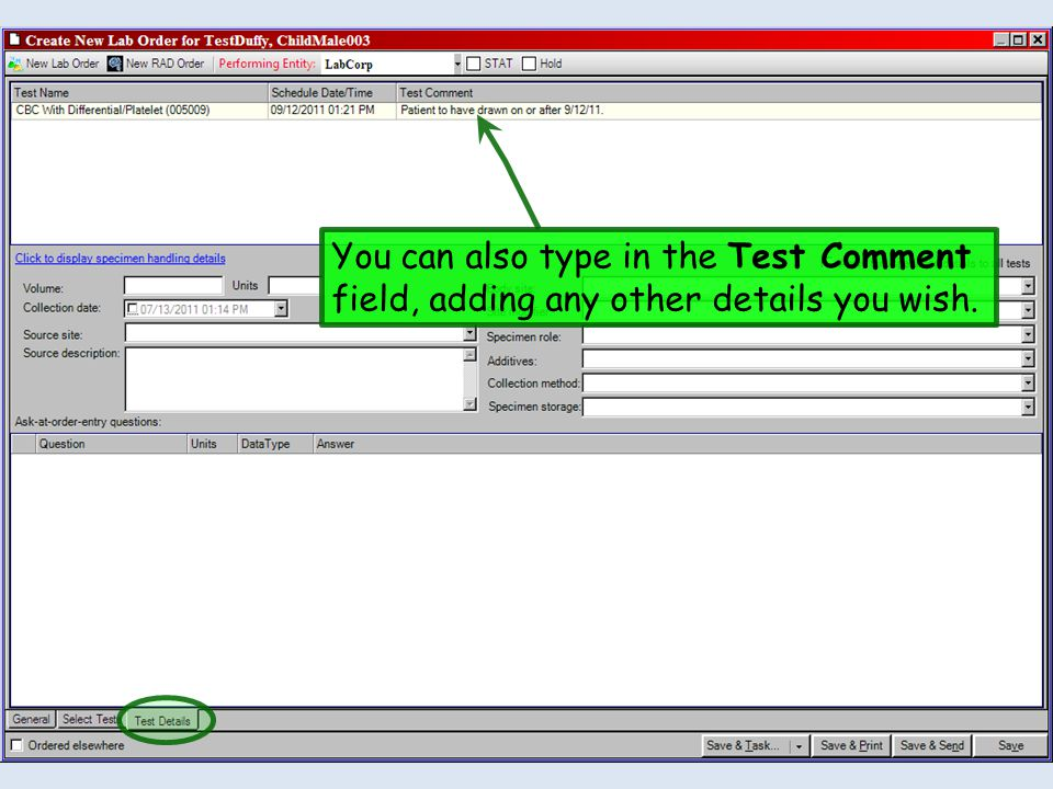 You can also type in the Test Comment field, adding any other details you wish.
