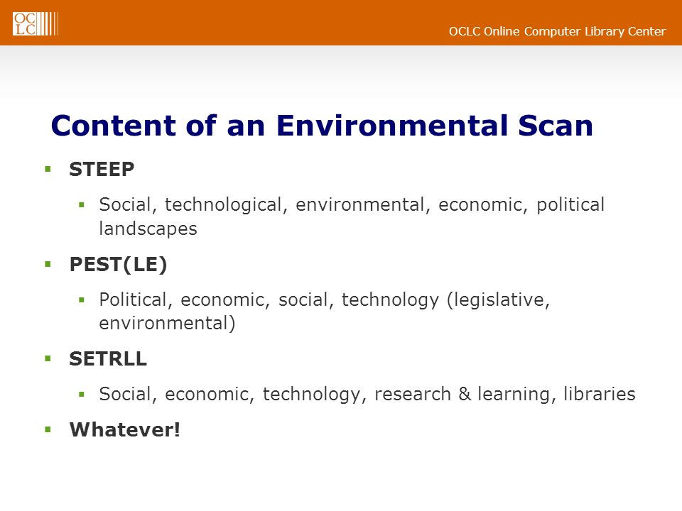Content of an Environmental Scan