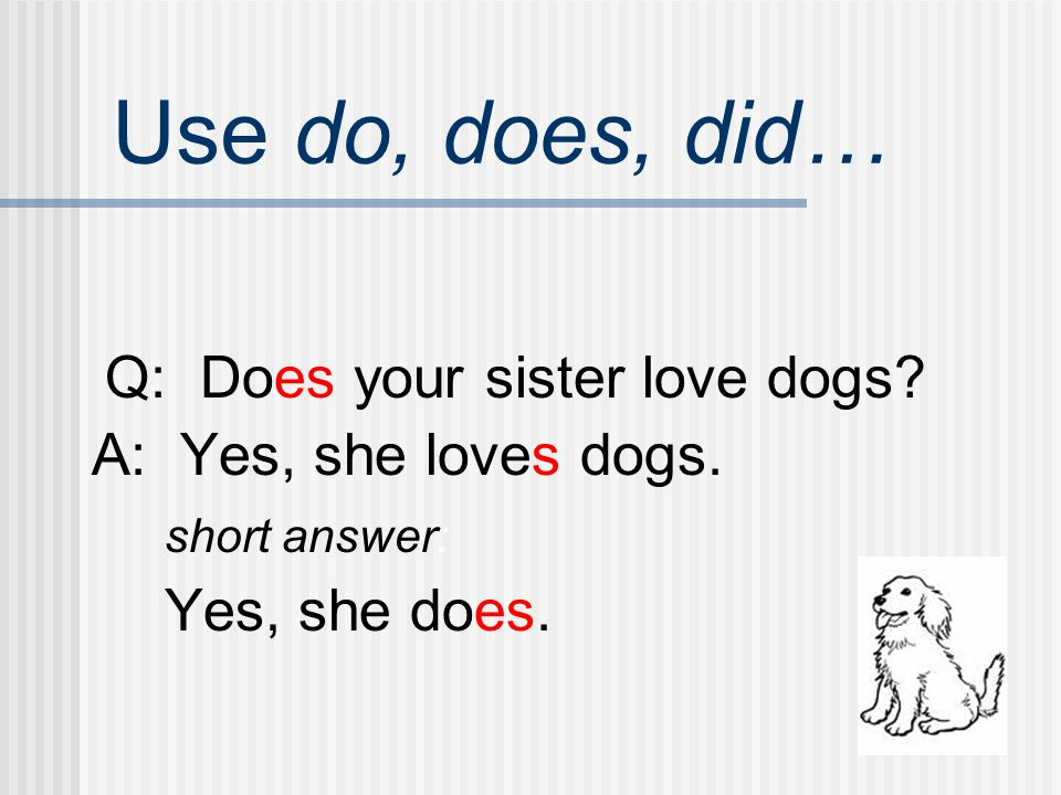 Use do, does, did… Q: Does your sister love dogs