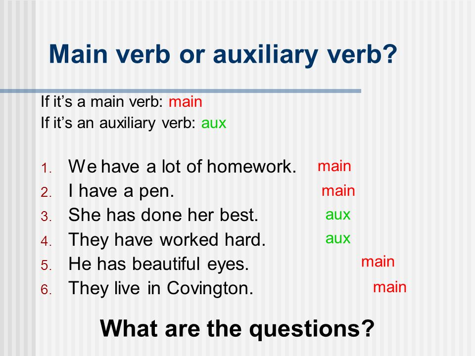 Main verb or auxiliary verb