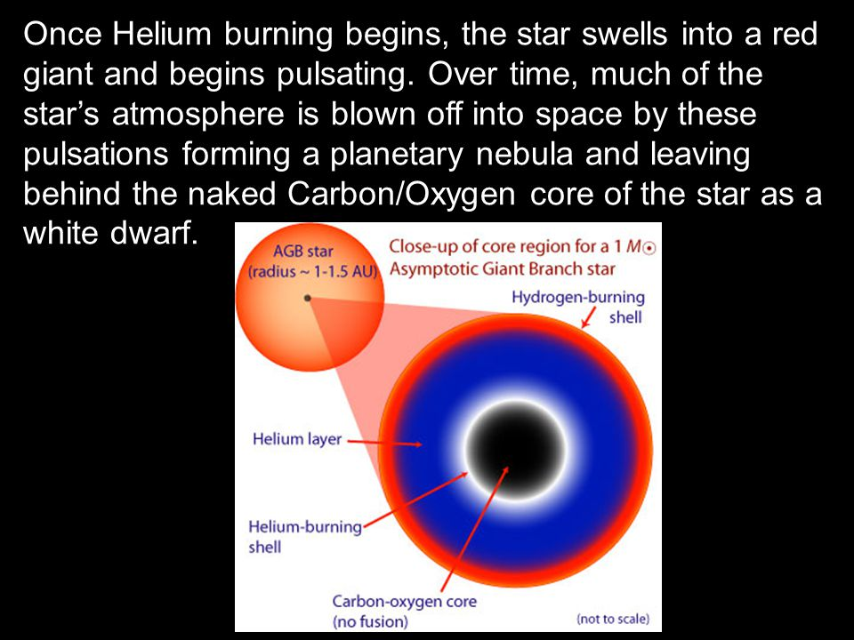 Once Helium burning begins, the star swells into a red giant and begins pulsating.