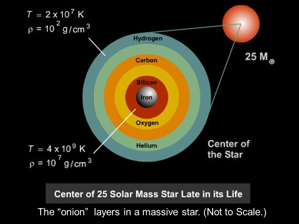 The onion layers in a massive star. (Not to Scale.)