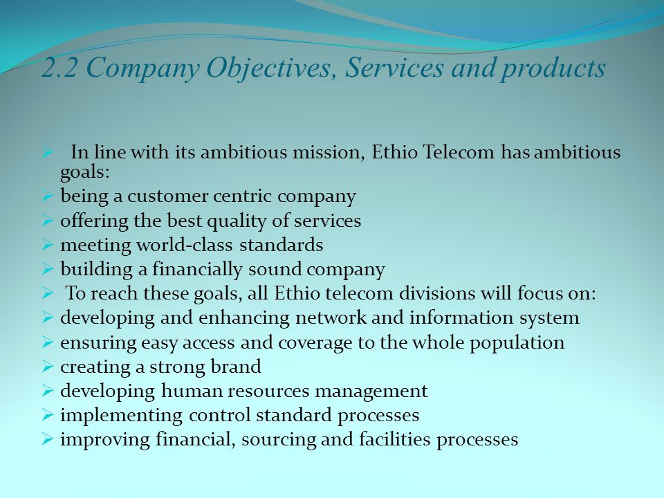 2.2 Company Objectives, Services and products
