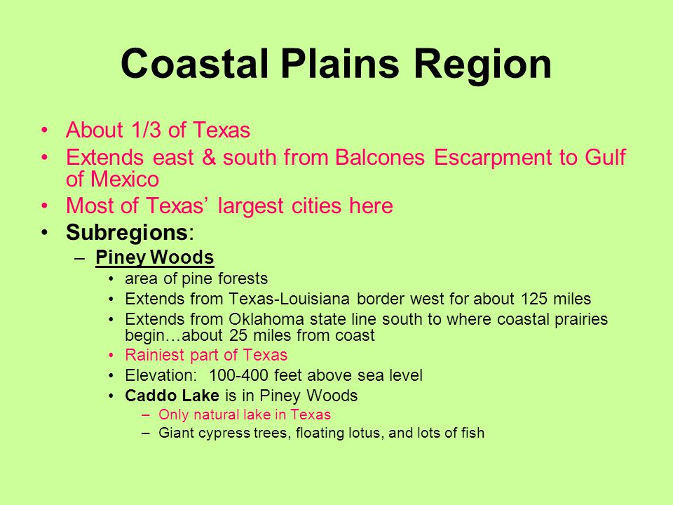 Coastal Plains Region About 1/3 of Texas