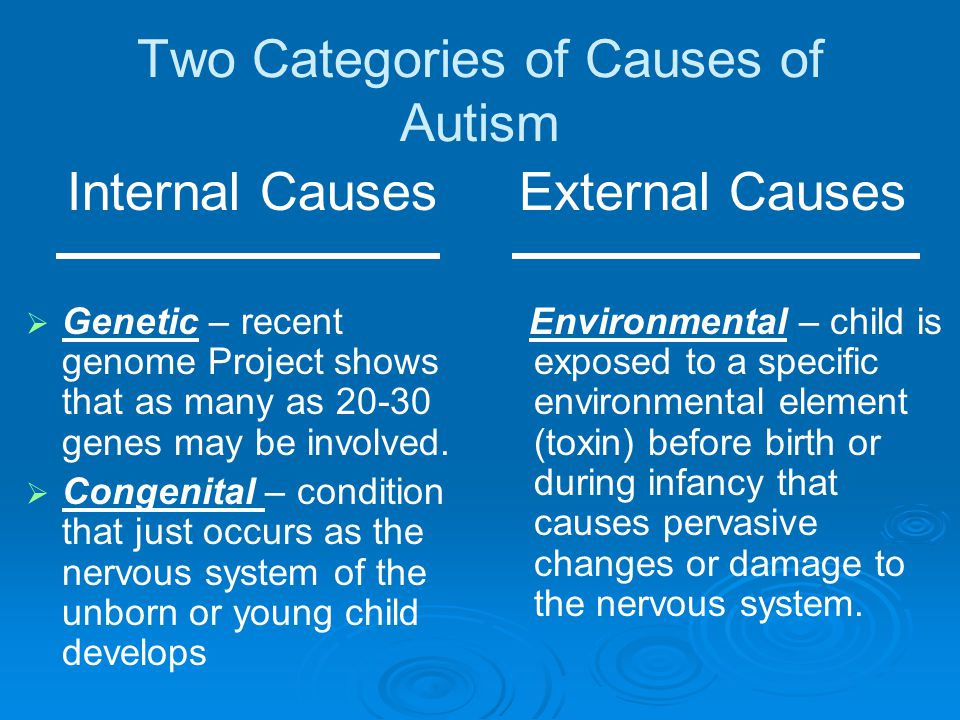 Two Categories of Causes of Autism