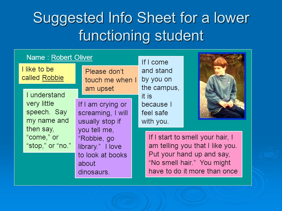 Suggested Info Sheet for a lower functioning student